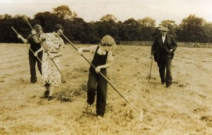 family raking hay